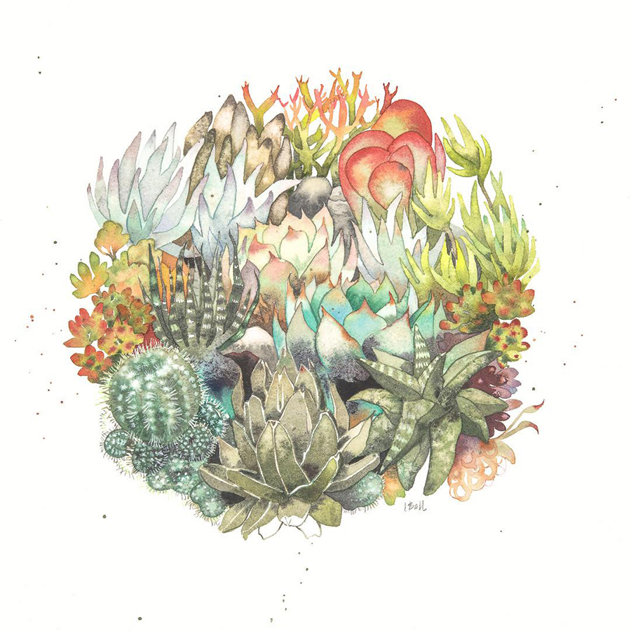 Laura Ball Succulent Print Minis Exhibition