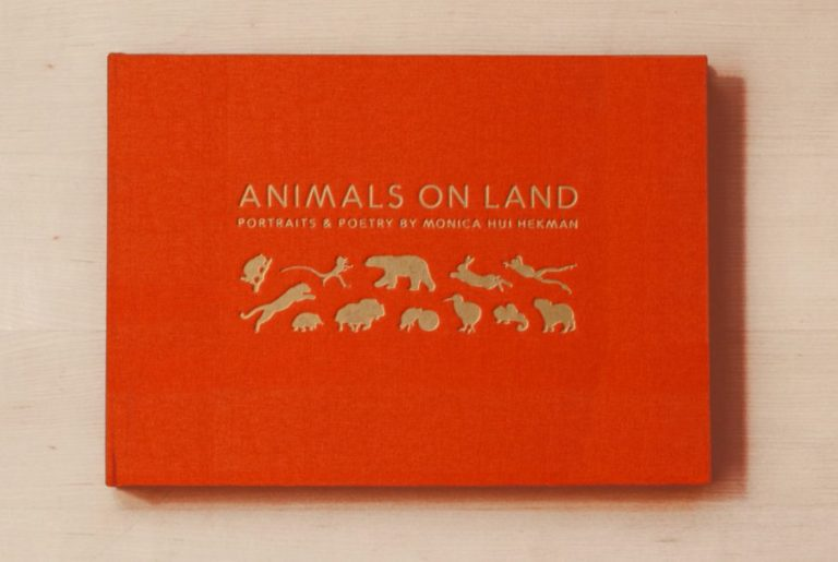 Animals on Land