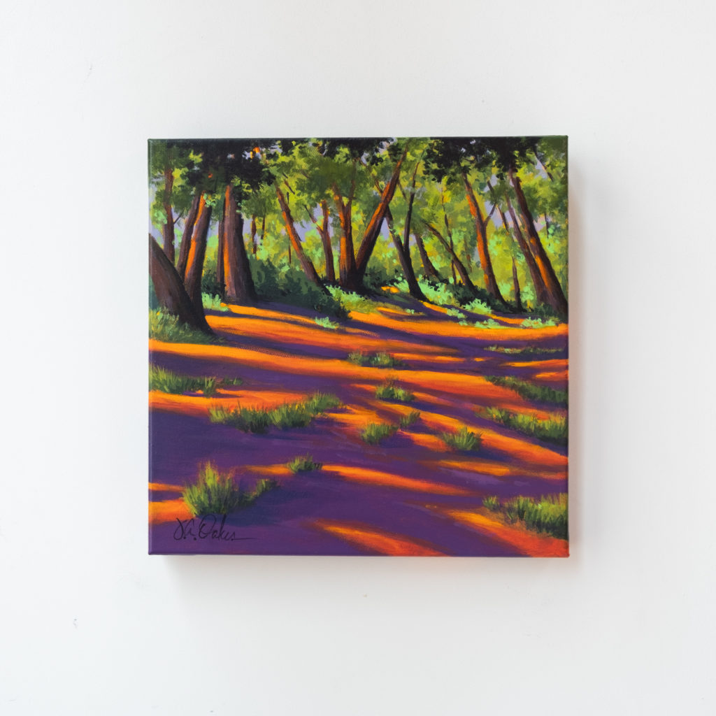 Joe Oakes - Shadows in the Clearing